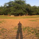 「カルマの法則」を理解する重要性と原因探求の注意点